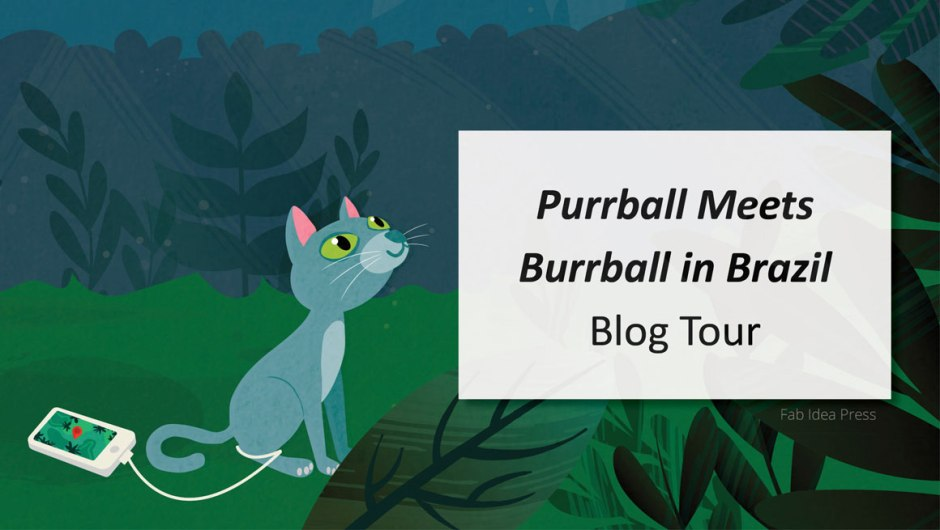 Purrball Meets Burrball in Brazil