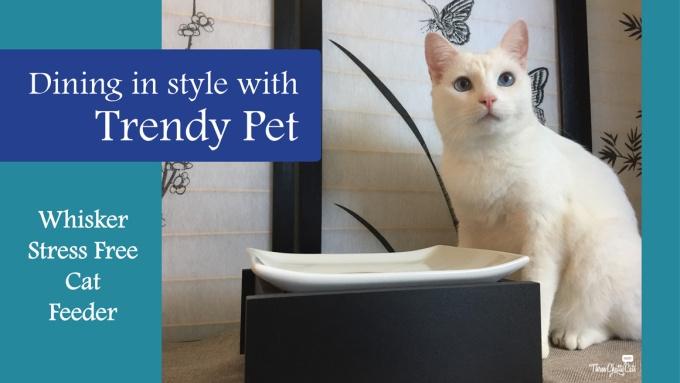 Trendy Pet Whisker Stress Free Cat Feeder